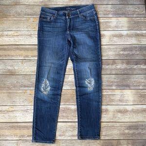 soho Newyork&Company Jeans